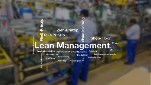 Lean Management Consulting